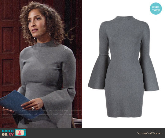 Milly Bell Sleeve Dress worn by Lily Winters (Christel Khalil) on The Young & the Restless