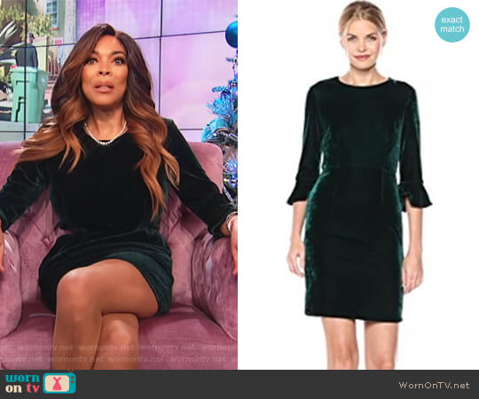 Green 3/4 Bell Velvet Sheath Dress by Donna Morgan worn by Wendy Williams  on The Wendy Williams Show