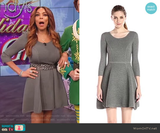 Textured Fit-and-Flare Sweater Dress by Milly worn by Wendy Williams  on The Wendy Williams Show