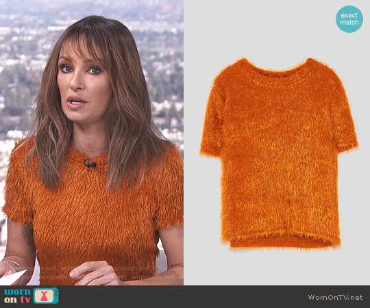 Faux Fur Top by Zara worn by Catt Sadler on E! News