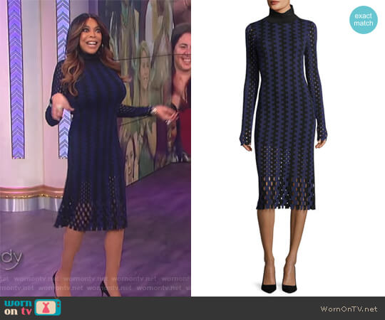 Turtleneck Long-Sleeve Knit Intarsia Midi Dress by Diane von Furstenberg worn by Wendy Williams on The Wendy Williams Show