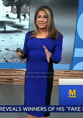 Ginger's blue and black long sleeve dress on Good Morning America