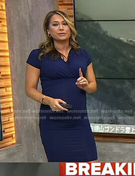 Ginger's navy short sleeve maternity dress on Good Morning America