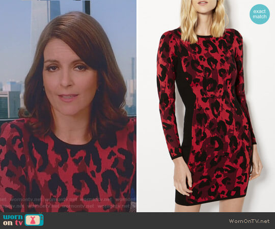 Leopard Pencil Dress by Karen Millen worn by Tina Fey on Great News