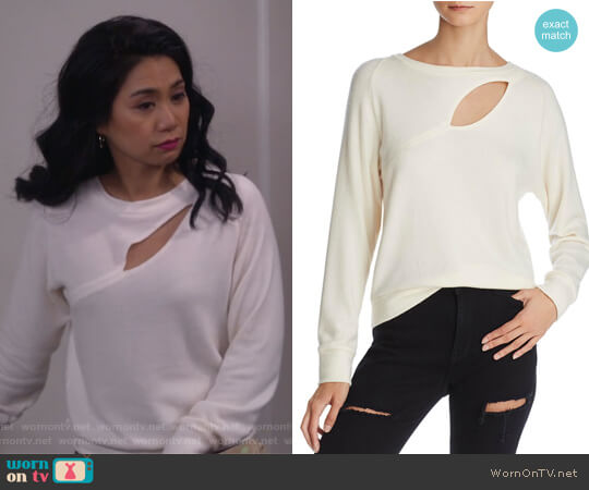 Phased Brushed Cutout Sweater by LNA worn by Eve Roberts (Liza Lapira) on 9JKL