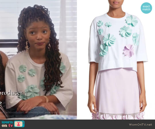 Floral Applique Crop Tee by Paskal worn by Skylar Forster (Halle Bailey) on Grown-ish