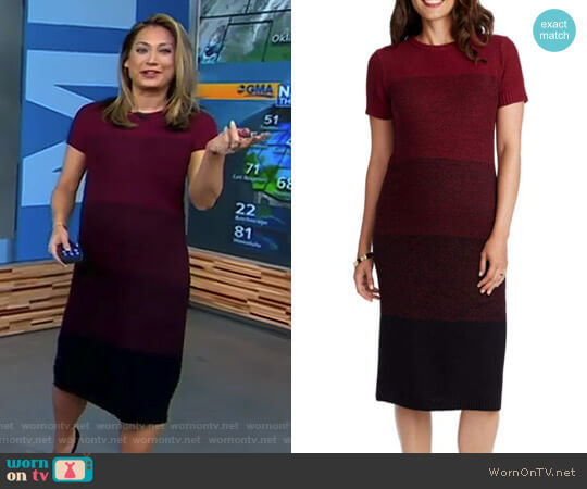 'Daisy' Ombré Maternity T-Shirt Dress by Rosie Pope worn by Ginger Zee on Good Morning America