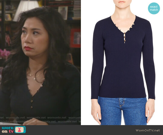 Olga V-Neck Sweater by Sandro worn by Eve Roberts (Liza Lapira) on 9JKL