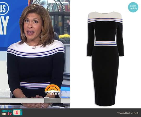 Striped Knit Midi Dress by Karen Millen worn by Hoda Kotb on Today