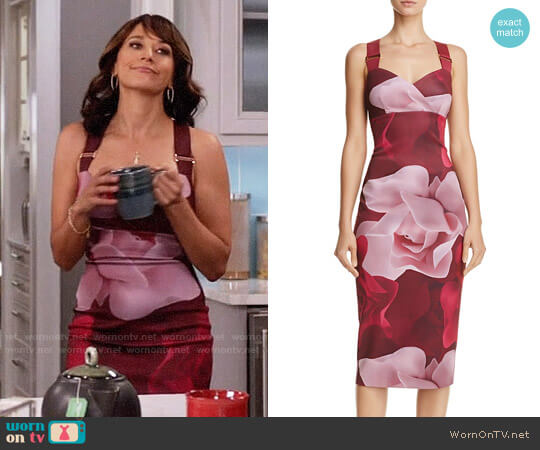 Ted Baker Mallie Porcelain Rose Dress worn by Rashida Jones on Black-ish
