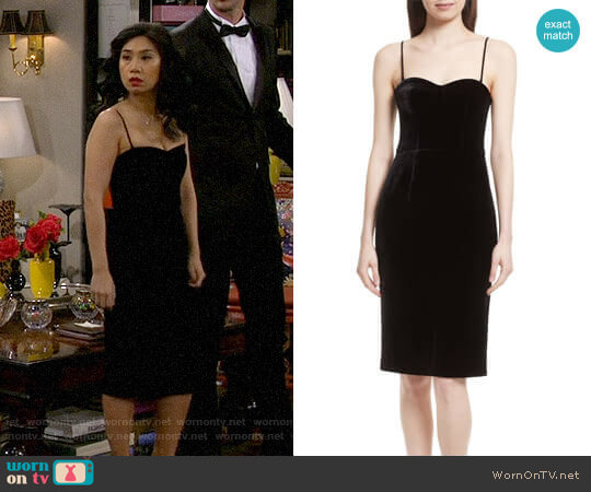 Luxe Velvet Corset Dress by Theory worn by Eve Roberts (Liza Lapira) on 9JKL