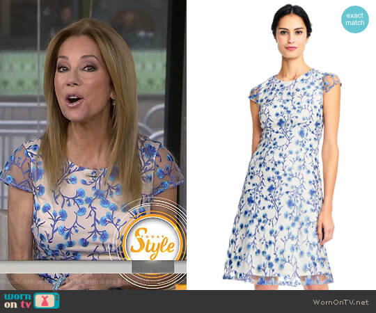 Floral Vine Embroidered Dress With Cap Sleeves by Adrianna Papell worn by Kathie Lee Gifford  on Today