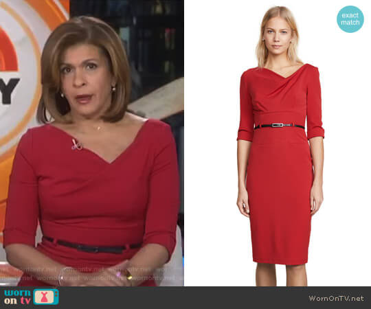 3/4 Sleeve Jackie O Dress by Black Halo worn by Hoda Kotb  on Today
