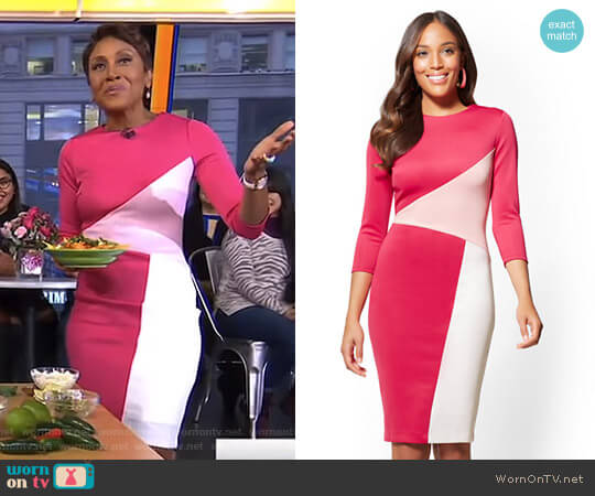 Colorblock Sheath Dress by New York & Company worn by Robin Roberts (Robin Roberts) on Good Morning America