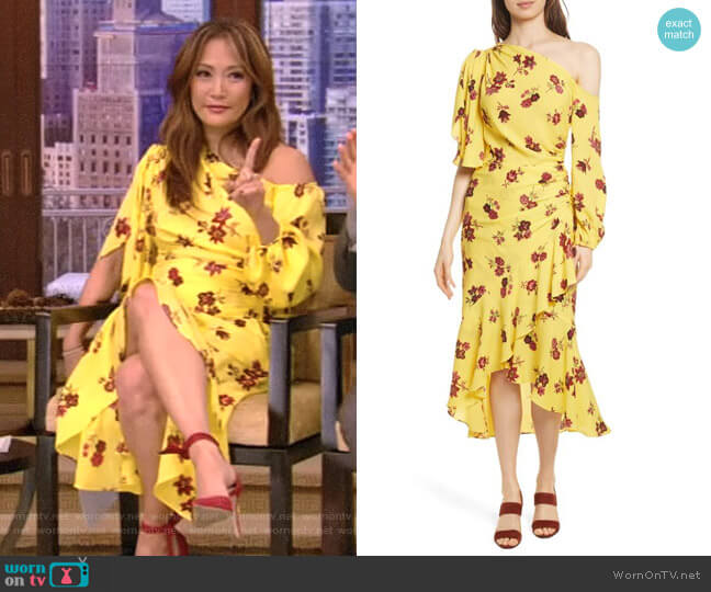 'Florence' Dress by ALC worn by Carrie Inaba on Live with Kelly & Ryan