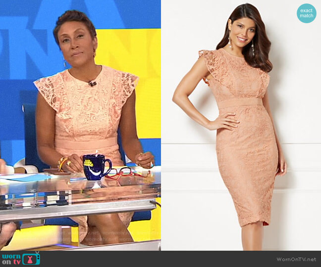 Eva Mendes Collection Roxanna Lace Sheath Dress by New York & Company worn by Robin Roberts  on Good Morning America