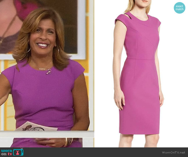 'Danouk' Sheath Dress by Boss worn by Hoda Kotb on Today