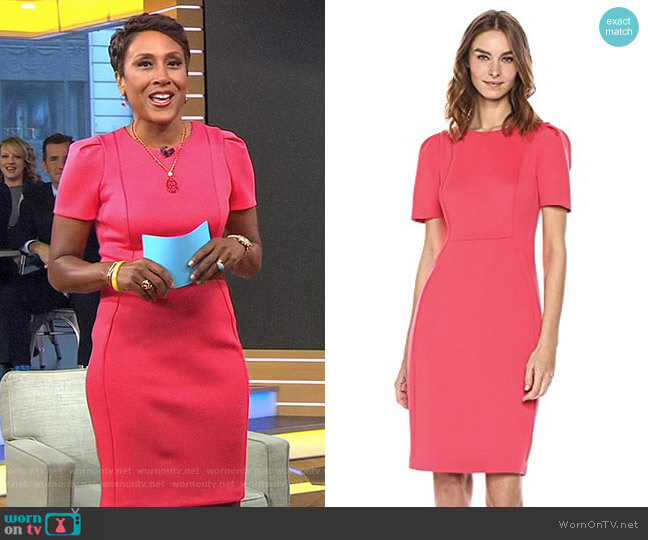 Short Sleeved Sheath with Princess Seams Dress by Calvin Klein worn by Robin Roberts  on Good Morning America