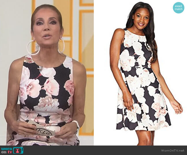 Fitted A-Line Sleeveless Dress by Adrianna Papell worn by Kathie Lee Gifford  on Today