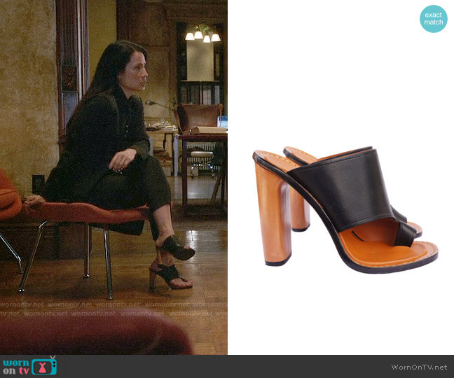 Céline Phoebe Philo Collection Slide Sandals worn by Joan Watson (Lucy Liu) on Elementary