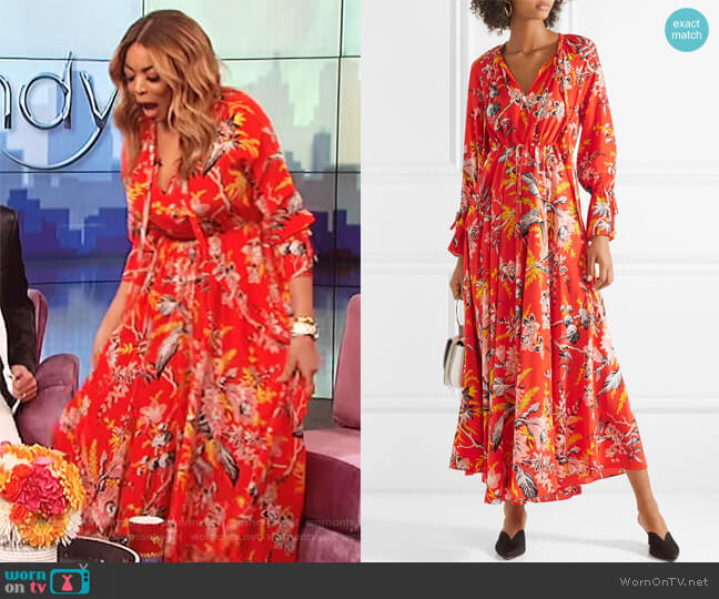 Bethany cinch sleeve maxi dress by Diane von Furstenberg worn by Wendy Williams on The Wendy Williams Show