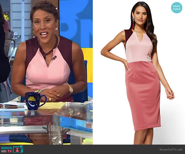 NY Deals Colorblock Sheath Dress by New York & Company worn by Robin Roberts on Good Morning America