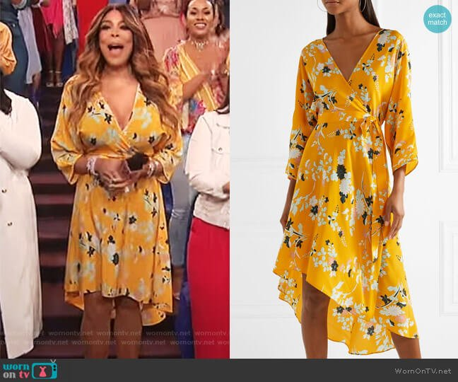 Eloise silk wrap dress by Diane von Furstenberg worn by Wendy Williams  on The Wendy Williams Show