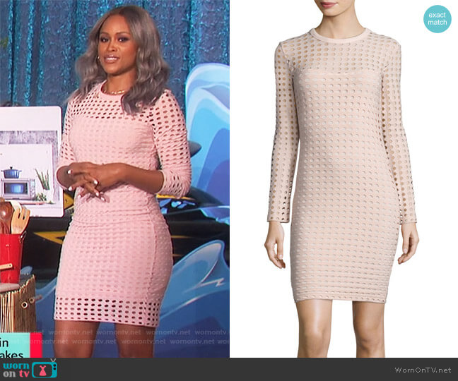 Long-Sleeve Jacquard Eyelet Mini Dress by T by Alexander Wang worn by Eve  on The Talk