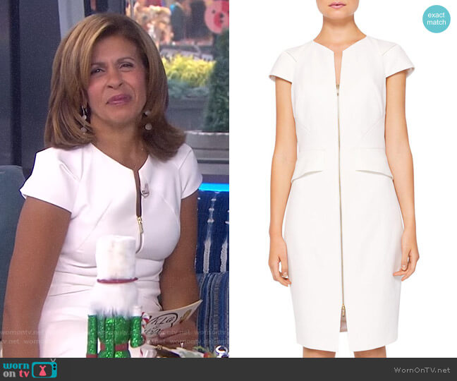 'Fearnid' Zip Front Pencil Dress by Ted Baker worn by Hoda Kotb on Today
