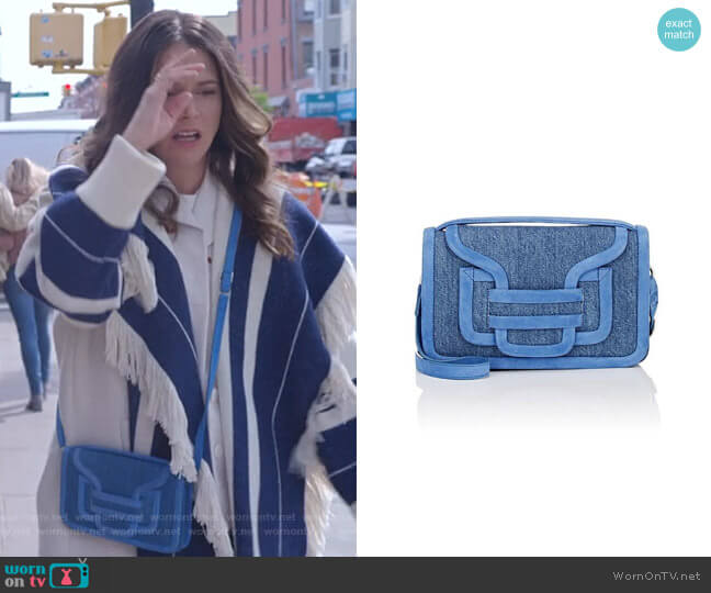Alpha Crossbody Bag by Pierre Hardy worn by Sutton Foster on Younger