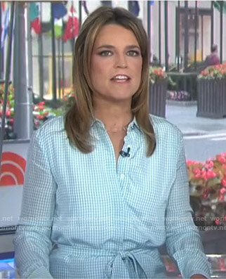 Savannah's blue gingham check shirtdress on Today