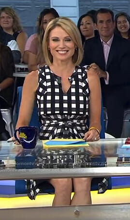 Amy's gingham check shirtdress on Good Morning America