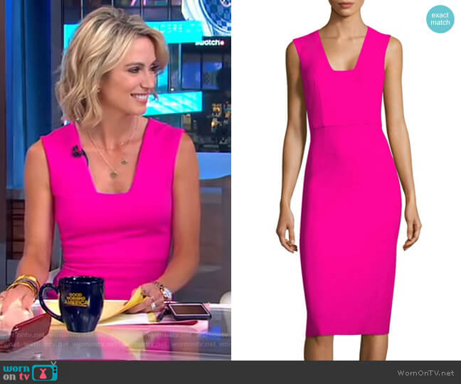 Sleeveless Dress by Antonio Berardi worn by Amy Robach  on Good Morning America