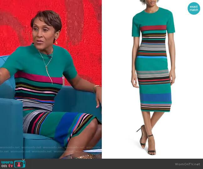Stripe Short Sleeve Sweater Dress by Diane von Furstenberg worn by Robin Roberts (Robin Roberts) on Good Morning America