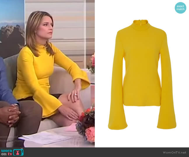 Bell Sleeve Top by Brandon Maxwell worn by Savannah Guthrie on Today