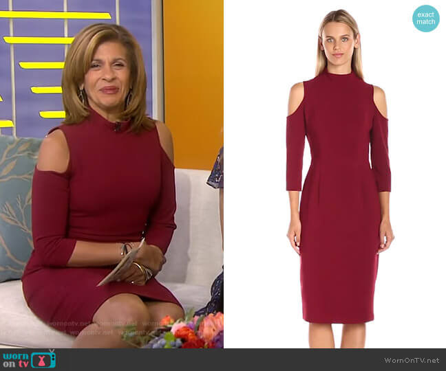 Sergia Sheath Dress by Black Halo worn by Hoda Kotb on Today