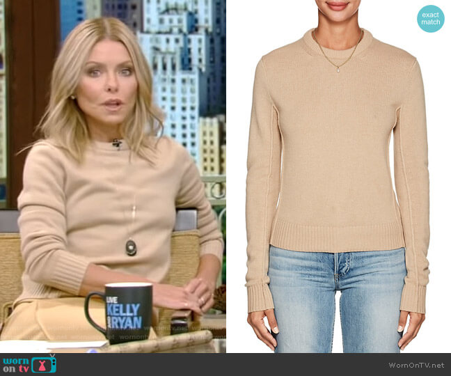 Cashmere Crewneck Sweater by Chloe worn by Kelly Ripa on Live with Kelly & Ryan