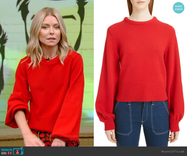 Iconic Sweater by Chloe worn by Kelly Ripa  on Live with Kelly & Ryan