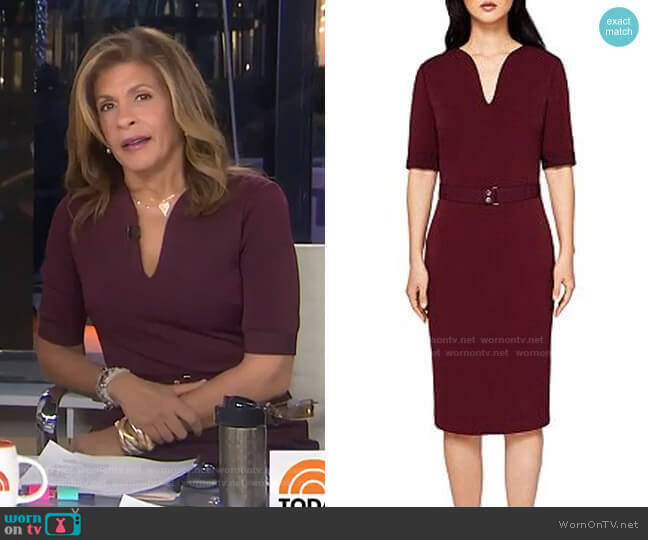Jesabil Dress by Ted Baker worn by Hoda Kotb  on Today