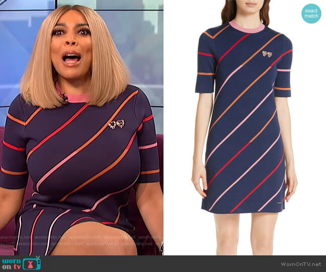 Colour by Numbers Pelinor Stripe Dress by Ted Baker worn by Wendy Williams  on The Wendy Williams Show
