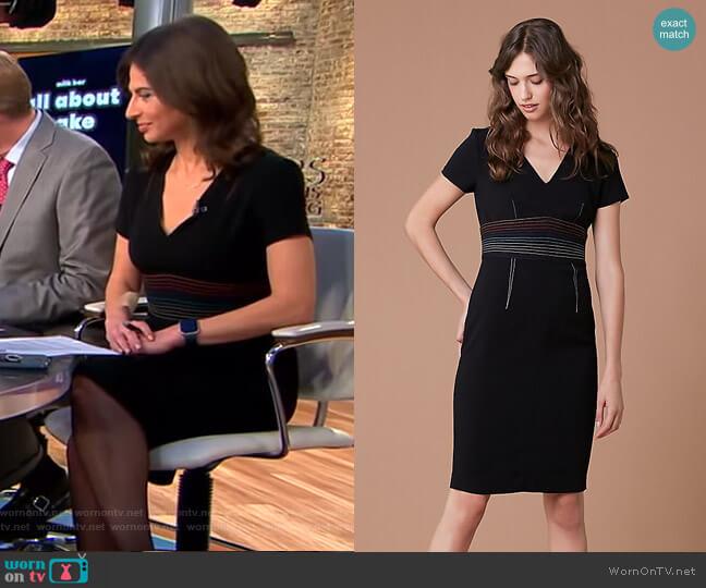 Short Sleeve V-Neck Tailored Dress by Diane von Furstenberg worn by Bianna Golodryga (Bianna Golodryga) on CBS This Morning