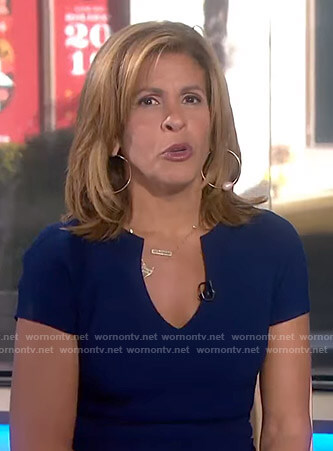 Hoda's navy v-neck sheath dress on Today
