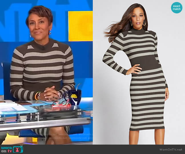 Gabrielle Union Collection Mock Neck Sweater Dress by New York & Company worn by Robin Roberts (Robin Roberts) on Good Morning America