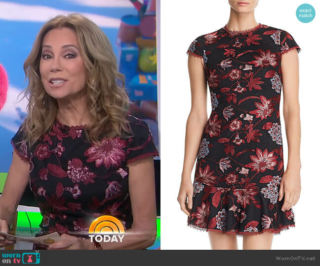 Embroidered Cocktail Dress by Aidan by Aidan Mattox worn by Kathie Lee Gifford (Kathie Lee Gifford) on Today