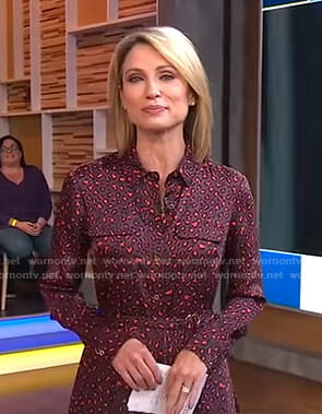 Amy's leopard shirtdress on Good Morning America
