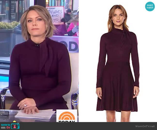 Tie Neck Sweater Dress by Eliza J worn by Dylan Dreyer  on Today