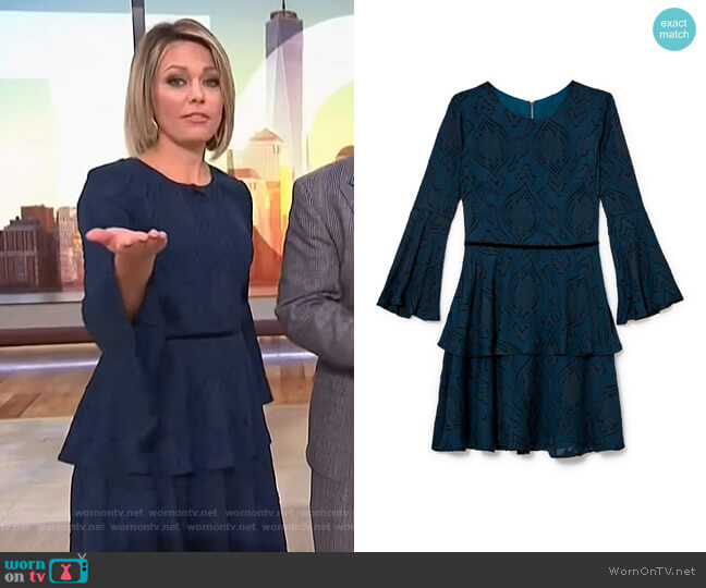 Burnout Bell Sleeve Dress by Vince Camuto worn by Dylan Dreyer  on Today