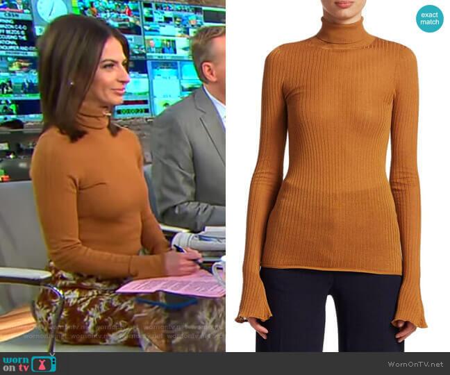 Rib Knit Turtleneck by Victoria Beckham worn by Bianna Golodryga (Bianna Golodryga) on CBS This Morning