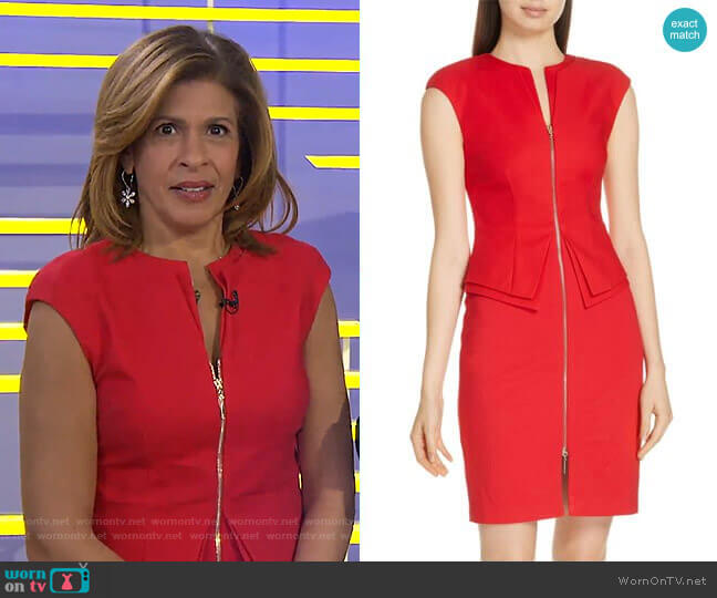 Kwyli Dress by Ted Baker worn by Hoda Kotb  on Today