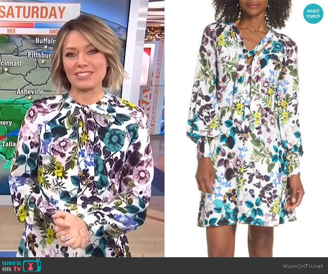 Floral Tie Neck Dress by Eliza J worn by Dylan Dreyer (Dylan Dreyer) on Today